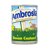 Ambrosia Devon Custard - 10180